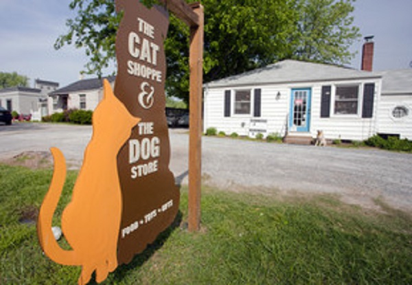the-Cat-Shoppe-the-Dog-Store