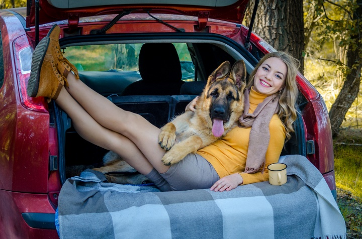Best-Dog-Crates-and-Carriers-for-Car-Travel