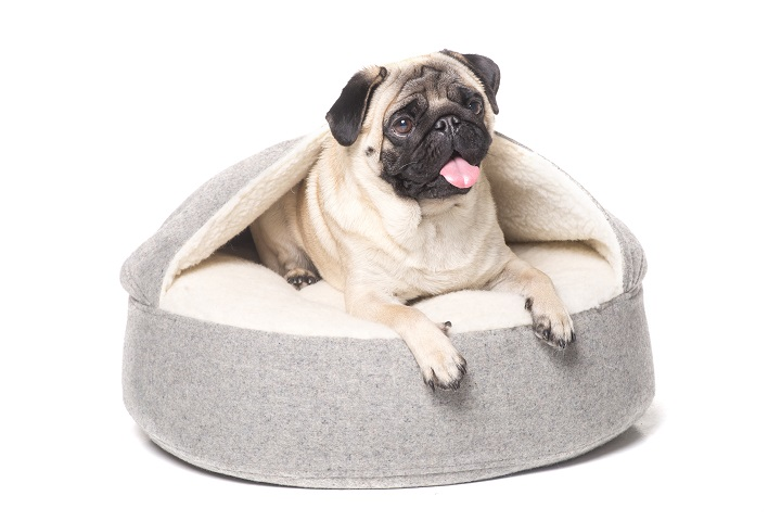 Best-Cave-Dog-Beds