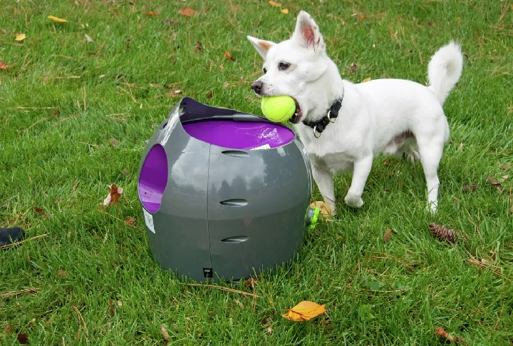 Best-Automatic-Fetch-Machines